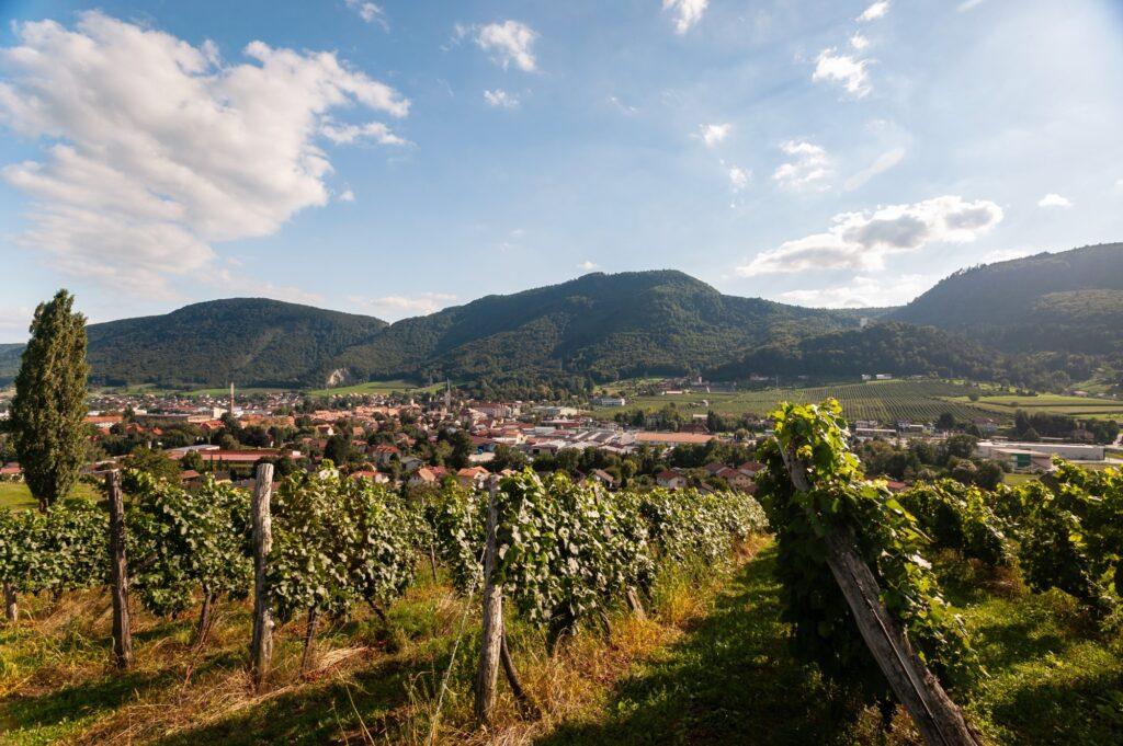 Panorama mesta Slovenske Konjice - FOTO: Miha Matavž Photo&Video, Turistična destinacija Rogla-Pohorje